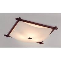 Настенно-потолочный светильник Citilux Белый Рамка CL931112