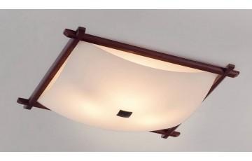 Потолочный светильник Citilux Белый Рамка CL931112