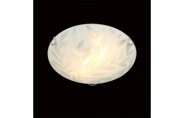 Настенно-потолочный светильник Eurosvet хром 40065/2