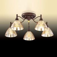 Потолочная люстра Odeon Light Treves 2625/5C