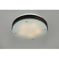 Потолочный светильник Omnilux OML-40307-05