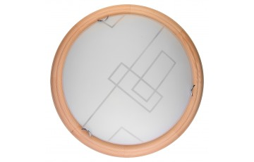 TL9540Y-00PN Настенно-потолочный светодиодный светильник Toplight Debora