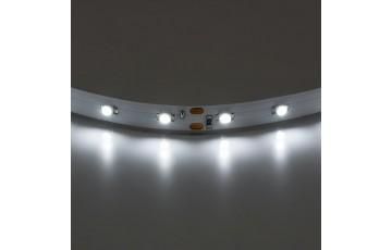 1м. Светодиодная лента белого цвета 3528, 4200К, 4,8W, 12V, 60LED/m, IP20 Lightstar 400004