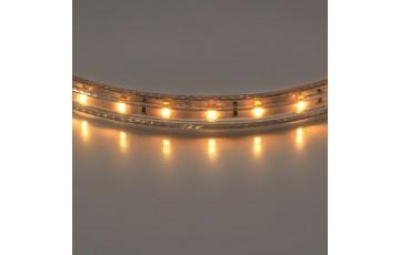 402002 Лента светодиодная теплый белый цвет 100м Lightstar 3528