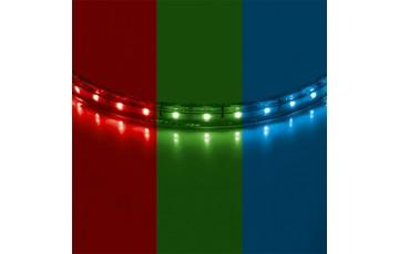 402050 Лента светодиодная цветная 50м Lightstar 5050