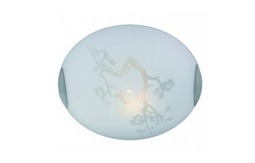 101759 Светильник настенно-потолочный Markslojd ANEBY