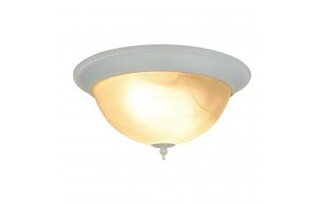A1305PL-2WH Потолочный светильник Arte Lamp Porch