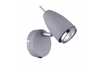 A1966AP-1GY Спот Arte Lamp Regista